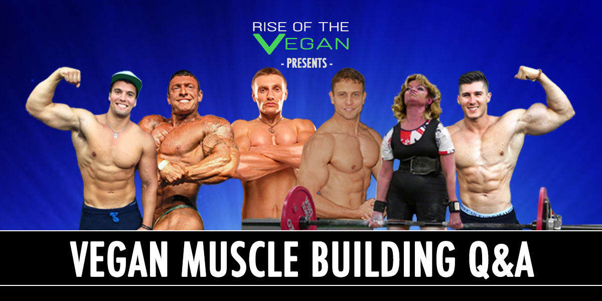 The bodybuilding supplements co uk Mystery Revealed