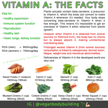 what vitamins are needed in a vegan diet